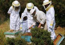 Οι στολές μελισσοκομίας στο νοσοκομείο της Ιεράπετρας