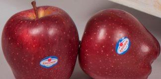 Ανανεώνουν το ραντεβού με τους καταναλωτές για τον Σεπτέμβριο τα μήλα ZAGORIN