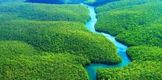 Aνάπτυξη στρατιωτικών δυνάμεων για την προστασία του τροπικού δάσους του Αμαζονίου