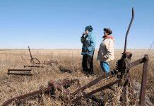 Εντός των ημερών η ρύθμιση για απαλλαγή των ετεροσυνταξιούχων με αγροτικό εισόδημα από εισφορές