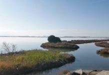Επεκτείνει τις δραστηριότητες της στην υδατοκαλλιέργεια η KOLIOS ZOIS Group of Companies