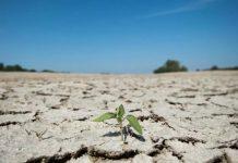 Γαλλία: Σε συναγερμό για την καλοκαιρινή ξηρασία