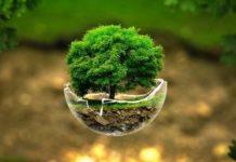Η στρατηγική της ΕΕ για τη βιοποικιλότητα με ορίζοντα το 2030