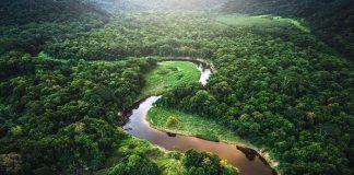 Στα ύψη εκτινάχθηκε η αποψίλωση του δάσους του Αμαζονίου τον Απρίλιο