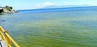 Άνθιση φυτοπλαγκτού στις ακτές της πόλης της Καβάλας