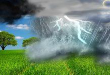 """ΑΠΘ: Δωρεάν μεταπτυχιακές σπουδές για """"Αειφορικά γεωργικά συστήματα παραγωγής και κλιματική αλλαγή"""""""