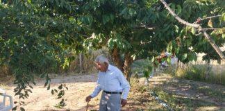 Επίμονος αγρότης ετών 88! Με ...πυξίδα την καινοτομία οργώνει τα χωράφια εδώ και σχεδόν επτά δεκαετίες