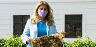 Σλοβακία: Μελισσοκομείο στον κήπο πίσω από το Προεδρικό Μέγαρο της Μπρατισλάβα
