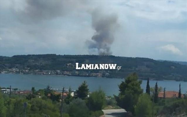Φθιώτιδα: Στις φλόγες αγροτοδασική έκταση στον δήμο Λοκρών