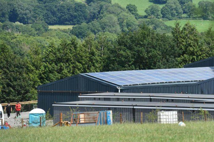 Περισσότεροι από 70 εργάτες θετικοί στον κορωνοϊό σε αγρόκτημα στην Αγγλία