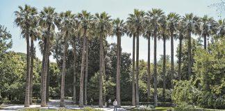 Πράσινο Ταμείο: 2,12 εκατ. ευρώ για αποκατάσταση του Εθνικού Κήπου και του Λόφου Φιλοπάππου