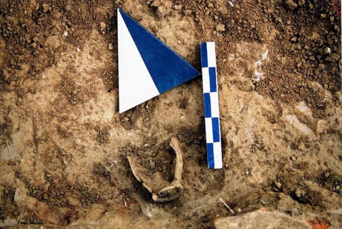Τα αποτελέσματα της αρχαιολογικής έρευνας στο Ιερό του Ελικωνίου Ποσειδώνα στην Αιγιάλεια