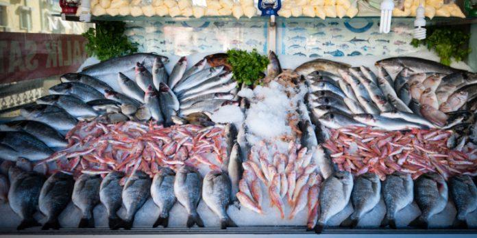 Ιχθυόσκαλα Νέας Μηχανιώνας: Κατασχέθηκαν πάνω από 100 κιλά ψάρια -Κέφαλοι, τσιπούρες