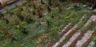 Κοζάνη: Καταστροφές από χαλάζι στο Δρυόβουνο