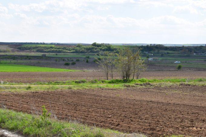 Κάλεσμα Δήμου Φλώρινας για αποψίλωση οικοπέδων – χωραφιών