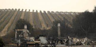 ΚΕΟΣΟΕ: Πάνω από 50.000 εκτάρια καταστράφηκαν από πυρκαγιές γύρω από τους αμπελώνες Napa και Sonoma στην Καλιφόρνια