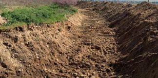 Ασυνείδητος πέταξε νεκρά πρόβατα σε ρέμα του Αμπελώνα