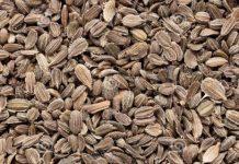 Δέματα με ύποπτους σπόρους από τρίτες χώρες αποστέλλονται σε Βολιώτες