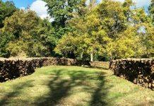 Φλώρινα: Ξεκινάει η διάθεση των ξύλων στην Κοινότητα Σκλήθρου