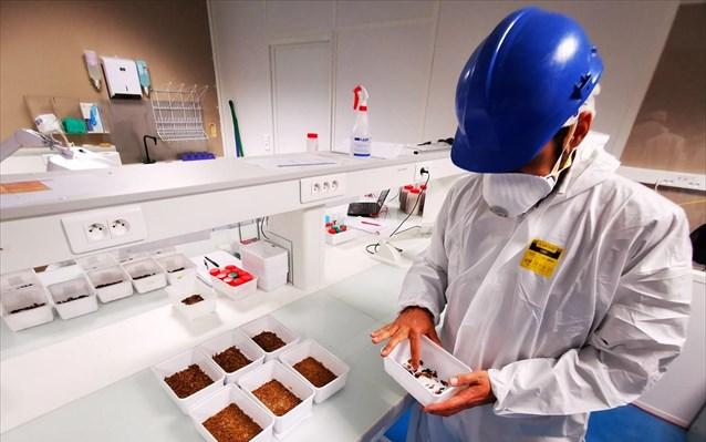 Φάρμα εντόμων στη Γαλλία για ζωοτροφές αλλά και ως λίπασμαφυτών