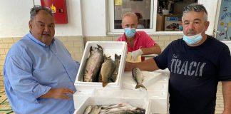 ΟΚΑΑ: Ειδικό σήμα θα ενημερώνει τους καταναλωτές για την εφαρμογή διαδικασιών ελέγχου προέλευσης των αλιευμάτων