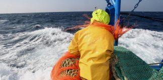 Πώς βασιλική χορηγία του 1666 δίνει άδεια σε Βέλγους αλιείς να ψαρεύουν σε Βρετανικά ύδατα