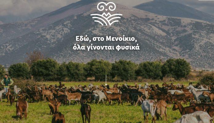 Συνεταιρισμός «Μενίκοιο»: Οι απαιτήσεις και δυσκολίες της ζωής του κτηνοτρόφου