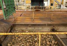 Ξεκίνησε σήμερα Δευτέρα 2/11 η παραλαβή τεύτλων από τη Royal Sugar στο εργοστάσιο των Σερρών,