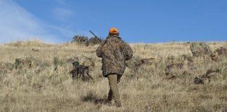 Κυνηγός σκοτώθηκε από φίλο του που τον πέρασε για αγριογούρουνο