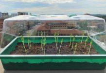 Νέο είδος χώματος υπόσχεται επανάσταση στη γεωργία