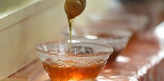 Μ. Βορίδης - 11ο Συνέδριο Μελιού: Σύντομα τα μέτρα στήριξης του μελισσοκομικού κλάδου