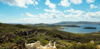 Πέντε νησιά στο Ν. Αιγαίο στη λίστα ευρωπαϊκών περιοχών πολιτιστικής κληρονομιάς υπό απειλή