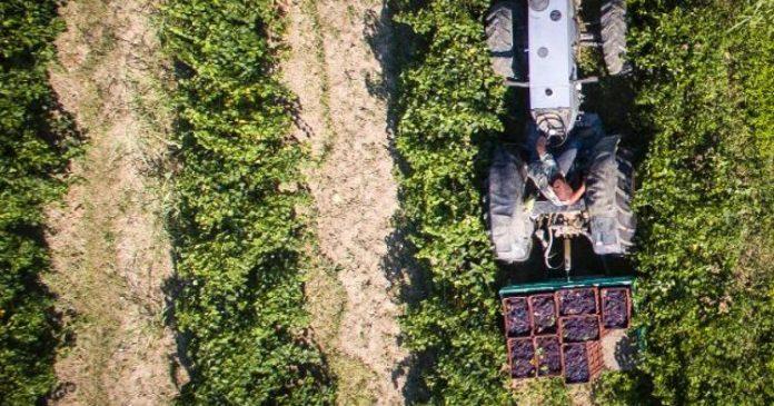 ΥΠΑΑΤ: Ολοκληρώνεται η δημόσια διαβούλευση του ν/σ για τις αθέμιτες πρακτικές στον αγροτικό τομέα