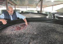 Επιτραπέζια Ελιά - Απολογισμός 2020: Με την πικρία των χαμηλών τιμών αποχαιρετούν τη χρονιά μαύρες και πράσινες ποικιλίες