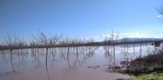 Καρδίτσα: Χιλιάδες στρέμματα πλημμύρισαν στον Δήμο Παλαμά