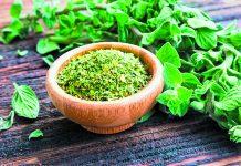 Πελοπόννησος: Ανοιχτή η αγορά αρωματικών φυτών - Απαιτούνται γνώσεις και συνεργασίες