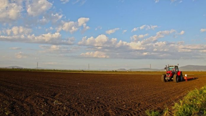 Οι άξονες που θα υποστηρίξουν την αγροτική παραγωγή της χώρας